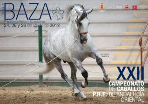 xiii Campeonato de  caballos PRE
